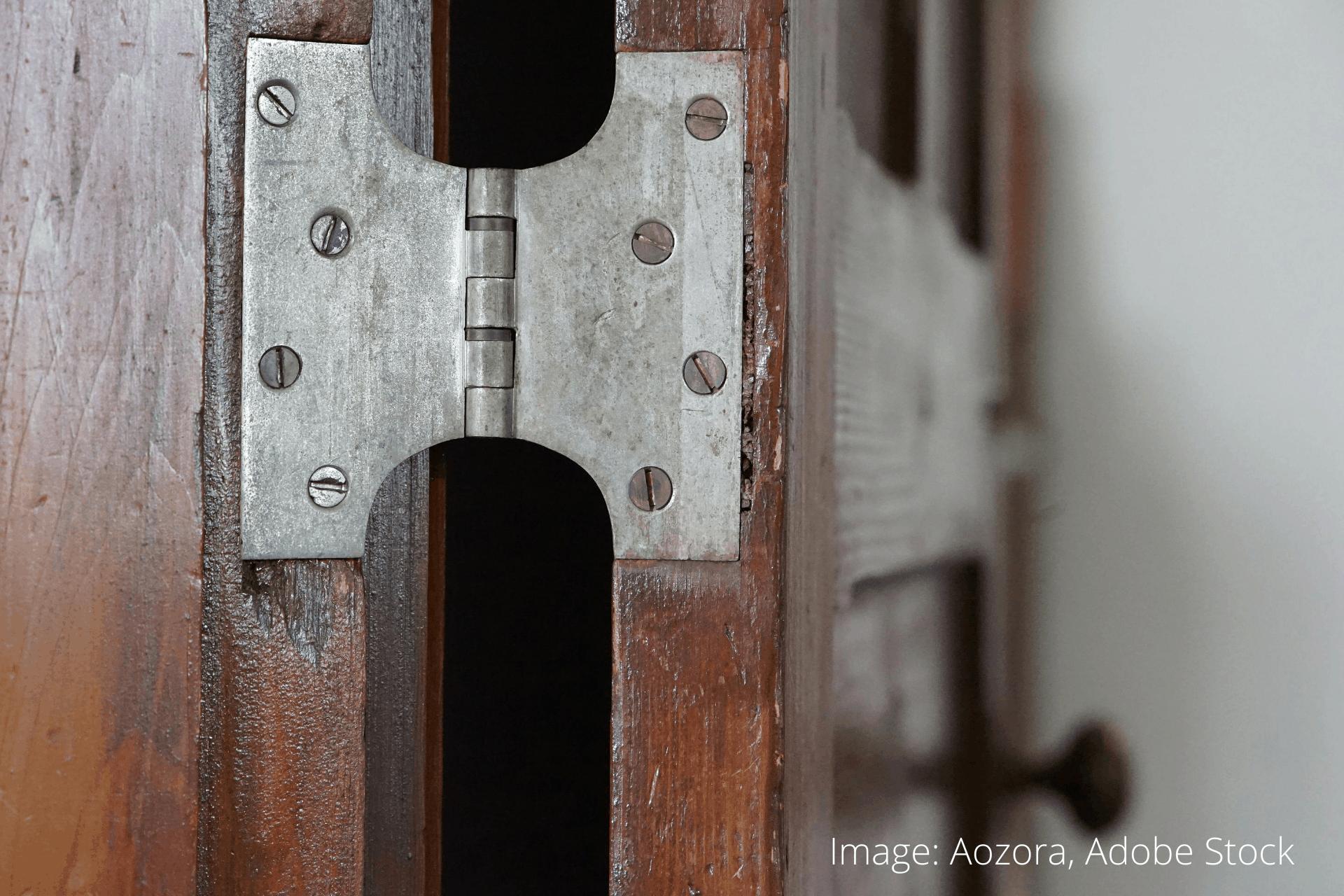 Door hinges